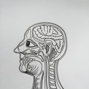 initial pencil drawing